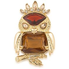Carolee Night at the Museum 12K Goldplated Imperial Owl Pin (12200 ALL) ❤ liked on Polyvore featuring jewelry, brooches, red, owl jewellery, carolee, owl jewelry, gold plated jewellery and pin jewelry