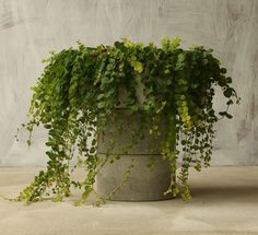 """16"""" Round Concrete Centerpiece by roughfusion on Etsy https://www.etsy.com/listing/123270943/16-round-concrete-centerpiece"""