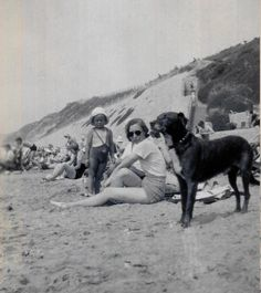 Vintage Photo..Dogs at the Beach 1930's, Original Photo, Old Photo Snapshot, Vernacular Photography, Pet Photos, Modern Social History Photo by iloveyoumorephotos on Etsy