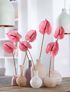 41 The Best Garden Design Ideas With the Concept of Valentines Day - DIY Garden Deko Cut Flowers, Pink Flowers, Flowers Garden, Flowers On Table, Shade Flowers, Lotus Flowers, Flower Gardening, Keramik Vase, Diy Garden