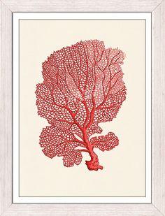 Sea fan coral no03  sea life printBuying three by seasideprints, $12.00
