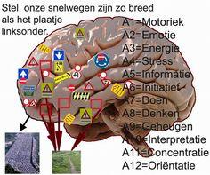 Zie: http://www.wetenschapsforum.nl/index.php/topic/175184-brein-bevat-netwerk-van-snelwegen Stel je dan voor dat je hersenen zó werken als op het plaatje en dat op sommige plekken de snelweg een smal paadje is. Dan kun je ongeveer voelen wat ik voel...
