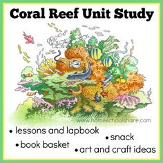 Coral Reef Unit Study and Lapbook from Homeschool Share Activities For Boys, Science For Kids, Preschool Activities, Coral Reef Art, Coral Reefs, Magic School Bus Episodes, Ocean Unit, Teaching Kids, Kids Learning