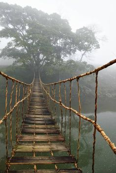 Travel with Cosianatour and get designed Vietnam tours just for you. Enjoy private guides & custom tours to see the variety of Vietnam from Hanoi to Hochiminh City by your own. Places To Travel, Places To See, Travel Destinations, Amazing Destinations, Vietnam Voyage, Vietnam Travel, Vietnam Tours, Sa Pa Vietnam, North Vietnam