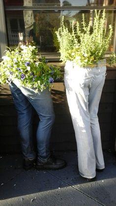 Pants planter