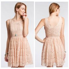 Blush Lace dress Full lined lace dress. True to size Dresses Mini