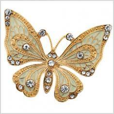 Lovely  golden butterfly