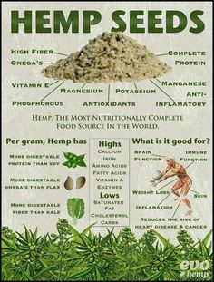 Hemp seeds are one of the most nutritionally complete foods in the world. This infographic explains why and what it is good for... - http://tv.greenmedinfo.com/amazing-benefits-hemp-seeds-infographic/