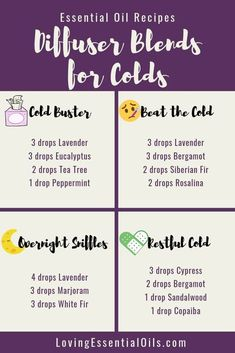 Young Living 320248223502365586 - 6 Diffuser Blends for Colds with Free Cheat Sheet by Loving Essential Oils Source by lovingeo Essential Oils For Colds, Essential Oils Guide, Essential Oil Diffuser Blends, Young Living Essential Oils Recipes Cold, Essential Oil Cold Remedy, Essential Oil Congestion, Oils For Diffuser, Mixing Essential Oils, Stuffy Nose Essential Oils