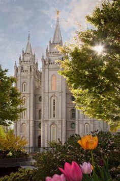 "Robert A. Boyd Fine Art. ""Springtime in Zion"" Salt Lake Temple #LDS #Mormon"