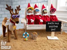 THE ELF ON THE SHELF~ Elf pet reindeer & elves vacation spot