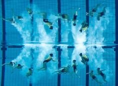 Team Switzerland at the finals of the European Diving and Synchronized Swimming Championships.