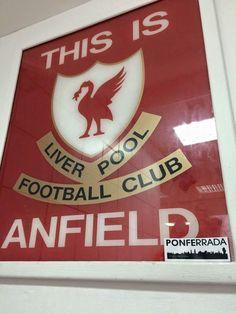 Liverpool Football Club, Liverpool Fc, My Love