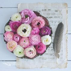Ranunculus love! I'm going to miss these beauties so much now that the season is almost over.