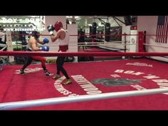 CONOR MCGREGOR LA SPARRING FOOTAGE VIDEO WITH CHRIS VAN HEERDON AS HE GETS READY FOR A POSSIBLE MAYWEATHER BOUT - REAL COMBAT MEDIA   REAL COMBAT MEDIA