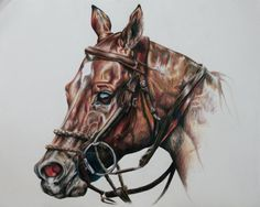 Linzay Marks, artist  http://www.facebook.com/pages/Linzay-Marks-Equine-Art/320407244640470