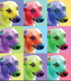 Colorful Display of Rainbow Images using your photo of your pet, child, friend, parents, etc. Final Digital Image emailed to you. by MamaSellsStuff on Etsy