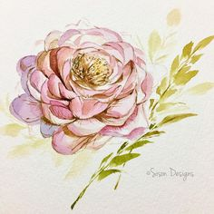 A li'l structured for today   .  .  .  .  .  .  .  .  .  #watercolorph #watercolour #watercolorpainting #watercolordesign #waterblog #watercolour_gallery #painting #inspiring_watercolors #floralpainting #botanicalwatercolor #artistsoninstagram #floraldesign #art #12monthsofpaint #liveauthentic #cbdrawaday #winsorandnewton #goodvibes #designspiration #design #illustration #artlovefeed #spoonflower #botanicalillustration #floralbouquet #art_we_inspire #watercolour_channel #instagood