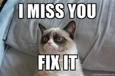 Roses are red, Violets are blue, we hate V-Day, how about you? Get anti-romantic with these 11 grumpy cat Valentine's Day memes! Grumpy Cat Quotes, Grumpy Cat Humor, Cat Memes, Funny Memes, Grumpy Kitty, Jokes, Grumpy Cat Valentines, Valentines Day Memes, Valentine Cards