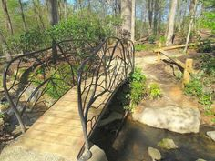 Do you know the difference between a bog and a swamp? This great North Carolina city park is a bog, and you'll want to see it in person! Cities In North Carolina, Moving To North Carolina, Greensboro North Carolina, Charlotte North Carolina, South Carolina, Storybook Forest, Bog Garden, Great North, Home Landscaping