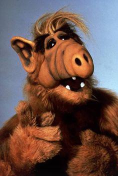 cartoon art tv shows Alf war ein Auerirdischer Alf Tv Series, 80 Tv Shows, Hate Cats, Oral History, My Childhood Memories, 90s Childhood, Old Tv, Classic Tv, Cartoon Art