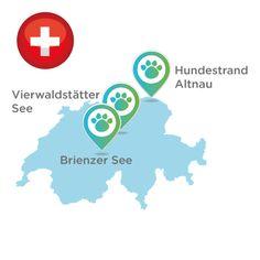 Hundestrände Schweiz Dog Travel, Dogs, Switzerland, Round Round, Destinations, Viajes, Doggies, Pet Dogs, Dog