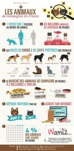 Les animaux de compagnie en France Quelques chiffres sur vos préférences...
