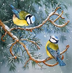 Blue Tits Bird Painting by artist Sue van Coppenhagen