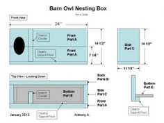 DIY plans for building a nest box designed for barn owls, with step-by-step instructions for building the owl box Garden Box Plans, Garden Shed Diy, Garden Boxes, Owl Nest Box, Owl Box, Baby Barn Owl, Barn Owls, Birdhouse Designs, Diy Birdhouse