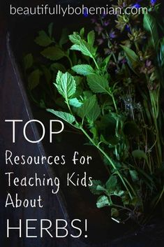 favorite resources to use for teaching kids about herbs. I've purchased and u., my favorite resources to use for teaching kids about herbs. I've purchased and u., my favorite resources to use for teaching kids about herbs. I've purchased and u. Teaching Kids, Kids Learning, Teaching Plants, Planting For Kids, Inspired Learning, Nature Study, Medicinal Herbs, Lessons For Kids, Amazing Gardens