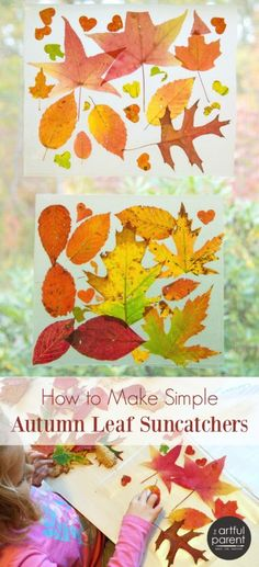 Simply Gorgeous Autumn Leaf Suncatchers These beautiful autumn leaf suncatchers are made with transparent contact paper and fresh autumn leaves. Easy & gorgeous, this nature craft is for all ages. Autumn Crafts, Fall Crafts For Kids, Autumn Art, Nature Crafts, Autumn Theme, Art For Kids, Fall Leaves Crafts, Toddler Art Projects, Toddler Crafts
