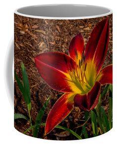 Red Splendor Coffee Mug by Scott Hervieux.  Small (11 oz.)