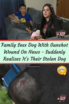 #Family #Sees #Dog #Gunshot #Wound #News #Suddenly #Realizes #Stolen #Dog One Year Ago, Almond Nails, Acrylic Nail Designs, Black Nails, Night Outfits, Balayage Hair, Suddenly, Album Covers, Wedding Hairstyles