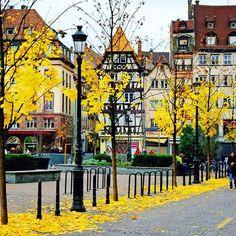 #Repost @alsacetourisme ・・・ The colours of Autumn in Place Kleber, Strasbourg.