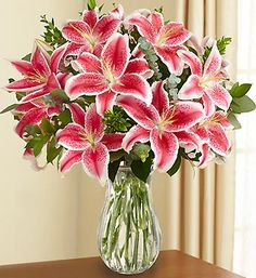 This is my favorite flower...and my daughters too.  She wants Stargazer Lilies in her wedding bouquet.