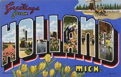 Vintage baton rouge louisiana la postcard greeting cards fridge greetings from holland michigan m4hsunfo