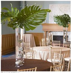 The reception tables featured three-foot-tall vases filled with succulents held together by gold wire and anchored by a rock. Alternating vases displayed elephant ear plants, which added to the tropical theme. Simple Centerpieces, Wedding Centerpieces, Wedding Decorations, Table Decorations, Tropical Centerpieces, Greenery Centerpiece, Wedding Ideas, Elephant Ear Plant, Elephant Ears