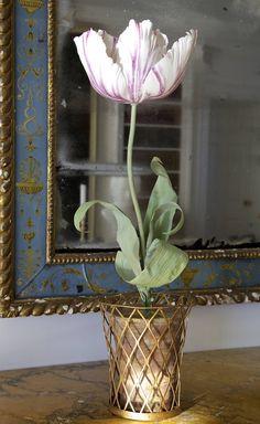 Porcelain Fancy Tulip