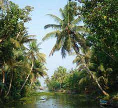 Wunderschöne Landschaften und Exotik pur in den Backwaters von Kerala #taipantouristik #indien #kerala #backwaters #kreuzfahrt #hausboot #exotik #soschön #immereinereisewert #reiseblogger #wanderlust #natur #rundreise Goa, Backwaters, Kerala, Strand, Wanderlust, River, Outdoor, Indian, Cruises