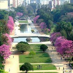 Porto Alegre, Rio Grande do Sul - Brazil Rio Grande Do Sul, Places Around The World, Around The Worlds, Beautiful World, Beautiful Places, Places To Travel, Places To Visit, Travel Destinations, Santa Catarina