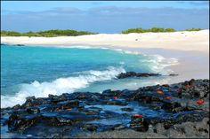 Santa Cruz Galapagos   Galapagos Voyager