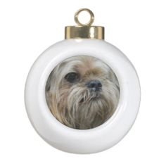 ==> consumer reviews          Brussels Griffon Ornaments           Brussels Griffon Ornaments In our offer link above you will seeShopping          Brussels Griffon Ornaments Online Secure Check out Quick and Easy...Cleck See More >>> http://www.zazzle.com/brussels_griffon_ornaments-256371748539501390?rf=238627982471231924&zbar=1&tc=terrest