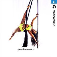 Pole, silks, and PoleFit® combo! Gorgeous! Repost @tashinator001 ・・・Pole Silks in my @badkittyusa outfit 😻 #photoshoot @dreamdancefitness #badkittypride #badkitty #poledancer #polesilks #polefabrics