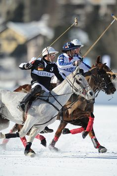 Polo in Snow