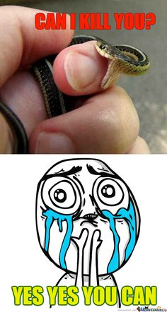 my garter snake did this all the time, he didn't know how to handle being held...