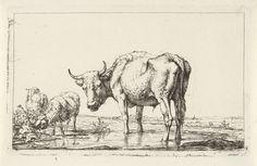 Jan Kobell (II) | Twee schapen en een stier bij een waterplas, Jan Kobell (II), 1788 - 1814 | In een landschap staat een stier tot zijn enkels in een waterplas, zijn kop is naar de toeschouwer gedraaid. Aan de rand van de plas staan een ram en een schaap; de ram eet van een distelstruik. Op de achtergrond staat vee te grazen en is een kerktoren te zien.