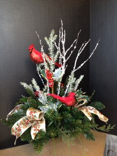 Red cardinal gagging out in a Christmas arrangement