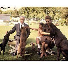 Pahlavi royal family