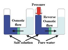 Reverse Osmosis   Reverse osmosis is a process that allows the removal of particles from ...