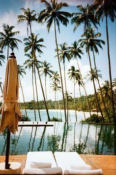 Escape to Sri Lanka.